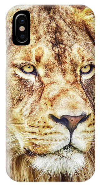 IPhone Case featuring the photograph Lion Is The King Of The Jungle by David Millenheft