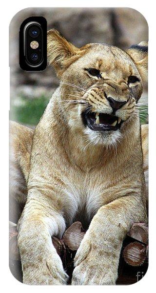 Lioness 2 IPhone Case