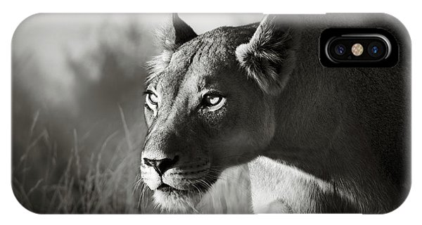 Hunting iPhone Case - Lioness Stalking by Johan Swanepoel