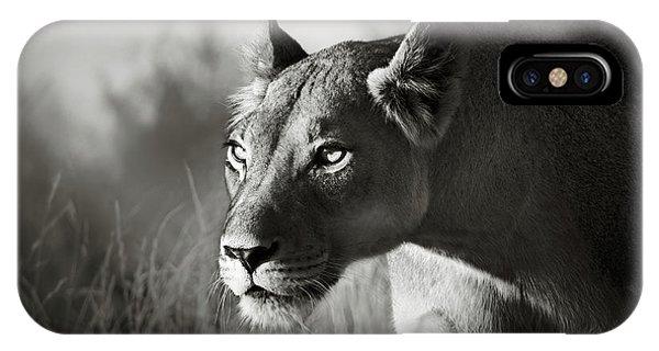 Wildlife iPhone Case - Lioness Stalking by Johan Swanepoel