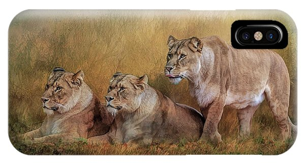 Lionesses Watching The Herd IPhone Case
