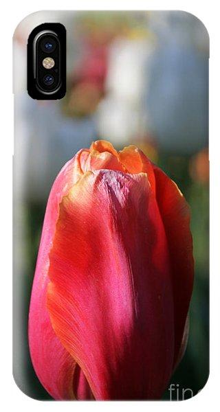 Lit Tulip 03 IPhone Case