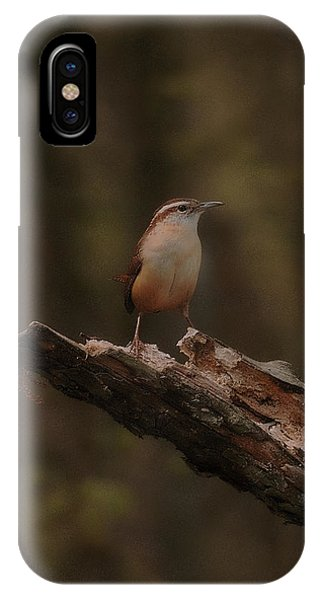 Little Big Stand IPhone Case