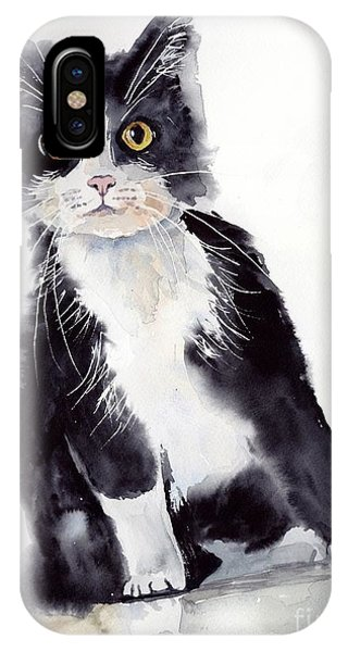 Cute Kitten iPhone Case - Little Black Scamp by Suzann Sines