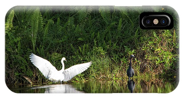 Little Blue Heron Non-impressed IPhone Case