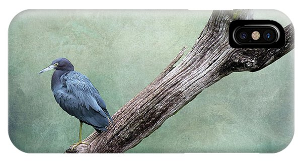 Little Blue Heron On Green IPhone Case