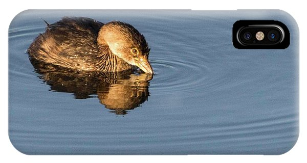 Little Brown Duck IPhone Case