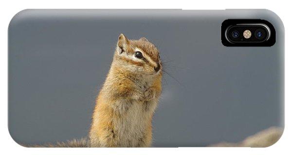 Little Things iPhone Case - Little Chipmunk by Jeff Swan