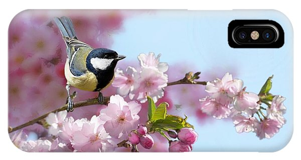 Little Coal Tit IPhone Case