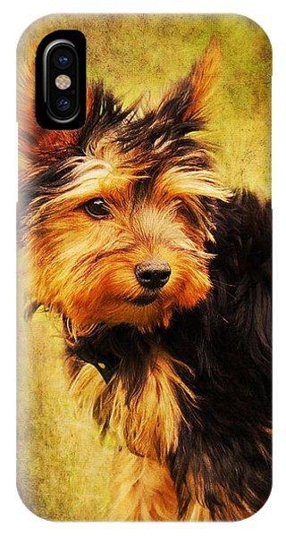 Little Dog II IPhone Case