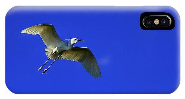 Little Egret, Egretta Garzetta IPhone Case