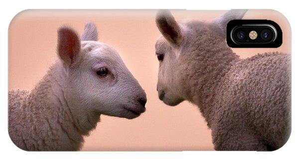 Sheep iPhone X / XS Case - Little Gossips by Angel Ciesniarska