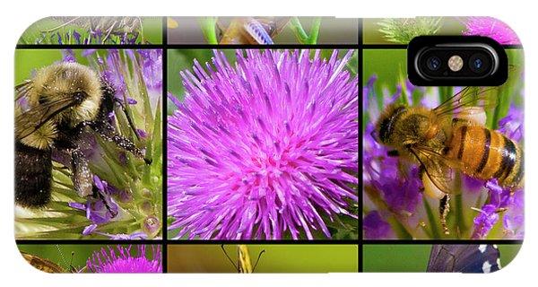 Grasshopper iPhone Case - Little Guys  by Betsy Knapp