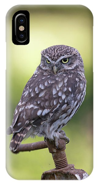 Little Owl Pipe Bender IPhone Case