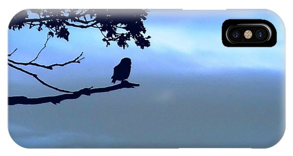 Little Owl Watching IPhone Case