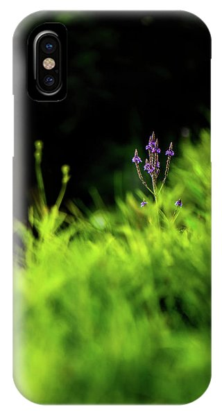IPhone Case featuring the photograph Little Purple Flower by Onyonet  Photo Studios