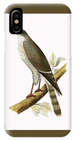 Little Red Billed Hawk IPhone Case
