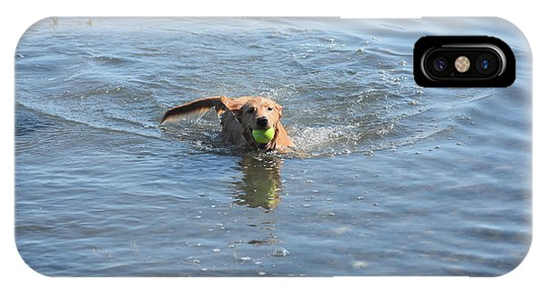 Little Red Duck Dog Swimming With A Tennis Ball IPhone Case