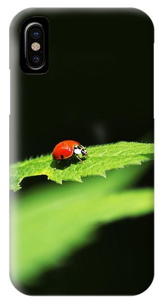 Little Red Ladybug On Green Leaf IPhone Case