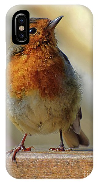 Little Robin Redbreast IPhone Case