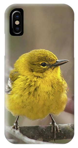 Little Yellow IPhone Case