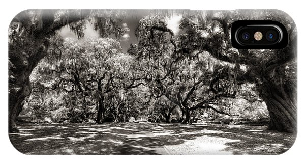 Live Oak Allee Infrared IPhone Case