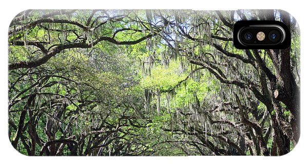 IPhone Case featuring the photograph Live Oak Canopy by Rick Locke