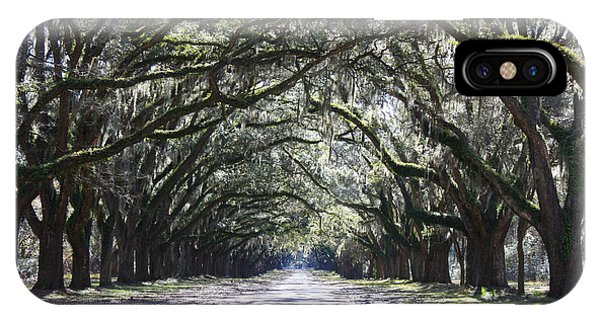Live Oak Lane In Savannah IPhone Case