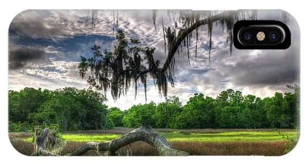 Live Oak Marsh View IPhone Case