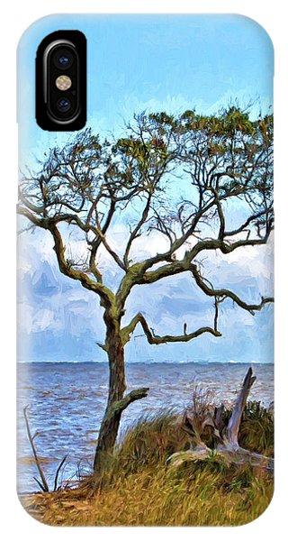 Live Oak On Winyah Bay IPhone Case