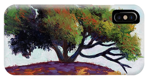 Live Oak Tree IPhone Case
