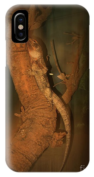 IPhone Case featuring the photograph Lizard On A Tree Trunk by Elaine Teague