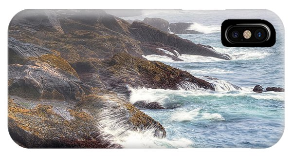 Lobster Cove IPhone Case