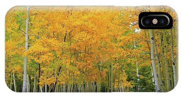 Lockett Meadow A Moment In Time IPhone Case