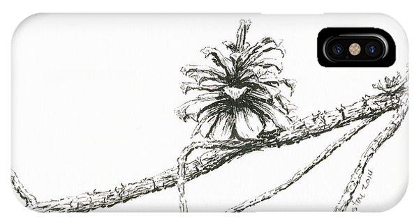 Lodgepole Pine Cone IPhone Case