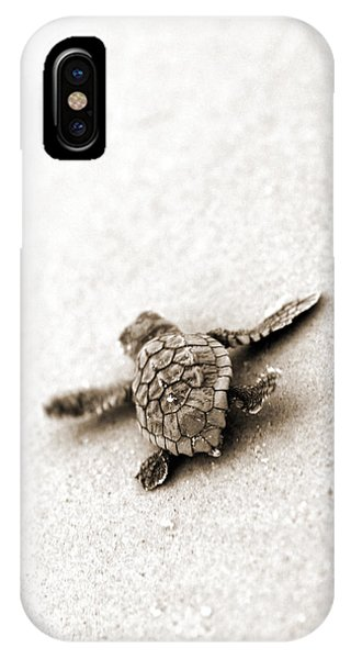 Reptiles iPhone Case - Loggerhead by Michael Stothard