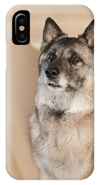 IPhone Case featuring the photograph Loki Sepia by Irina ArchAngelSkaya