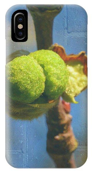 IPhone Case featuring the photograph London Plane Buds A - Platanaceae Fine Art by Jacek Wojnarowski
