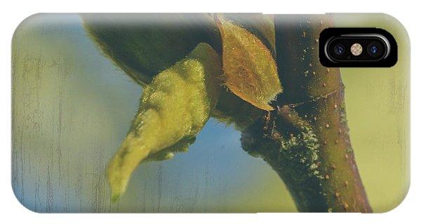 IPhone Case featuring the photograph London Plane Buds B - Platanaceae Fine Art by Jacek Wojnarowski