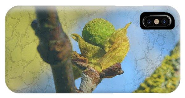 IPhone Case featuring the photograph London Plane Buds D - Platanaceae Fine Art by Jacek Wojnarowski