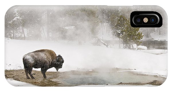 IPhone Case featuring the photograph Bison Keeping Warm by Gary Lengyel