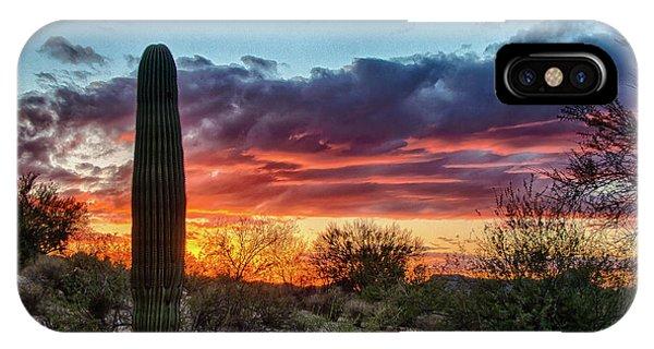 Lone Cactus IPhone Case