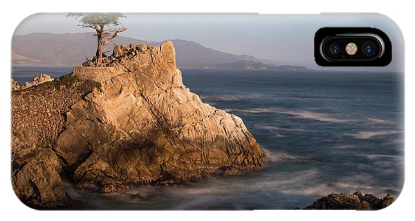 lone Cypress Tree IPhone Case