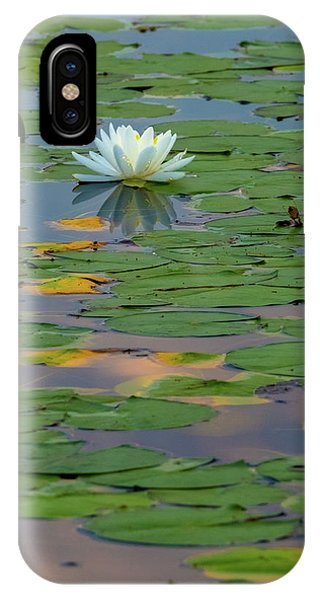 Lillie iPhone Case - Lone Lilly by Bill Wakeley
