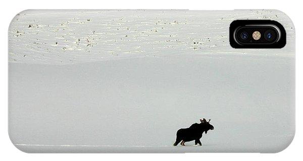 Lone Moose IPhone Case