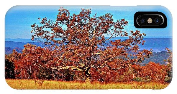 Lone Mountain Tree IPhone Case