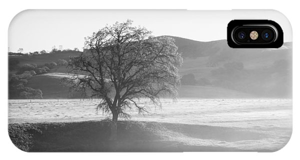 Lone Oak, Clearing Fog, San Andreas Rift Valley IPhone Case