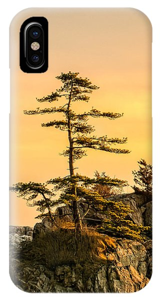 Lone Pine-crow Is. IPhone Case