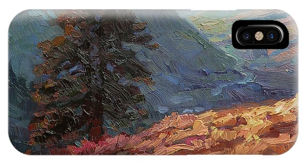 Abstract Landscape iPhone Case - Lone Pine by Steve Henderson