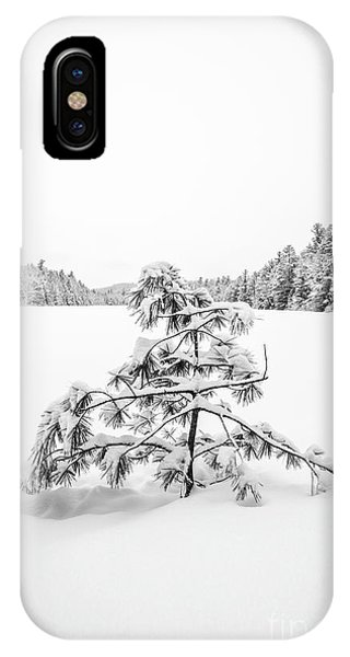 New Hampshire iPhone Case - Lone Pine Tree Anderson Pond Eastman New Hampshire by Edward Fielding